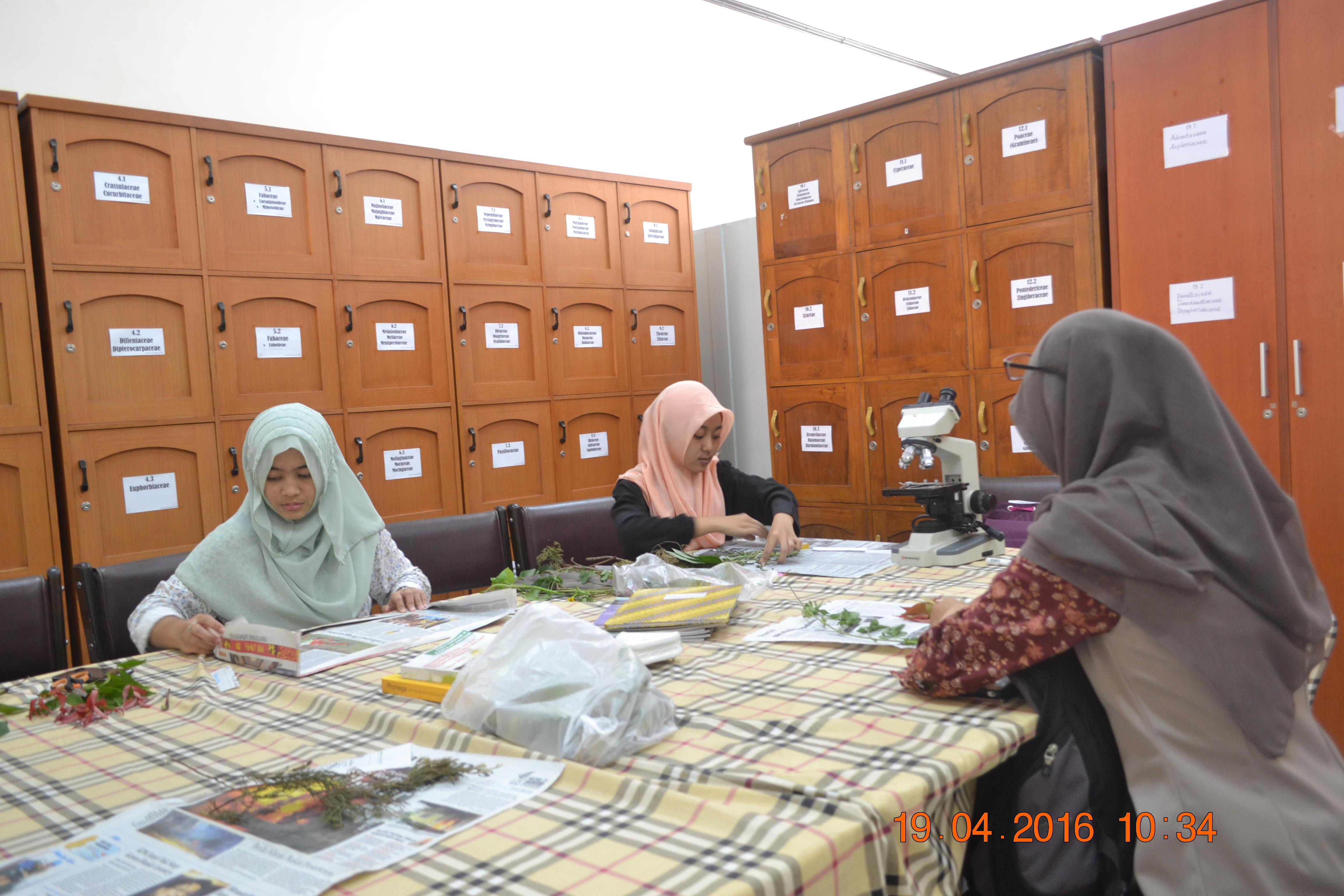 Kegiatan Mahasiswa/i di Herbarium Malangensis