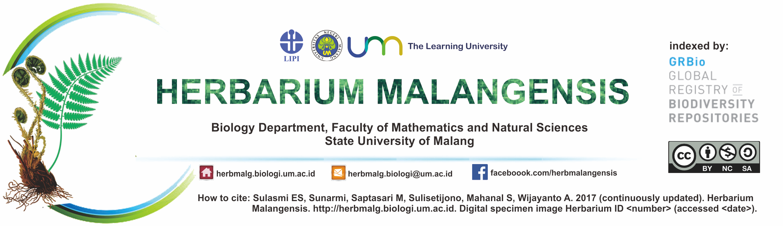 Herbarium Malangensis